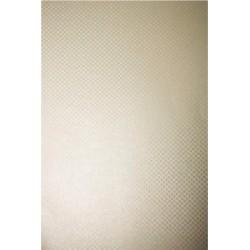 Papier ozdobny metalizowany Aster Metallic 250g Cream...