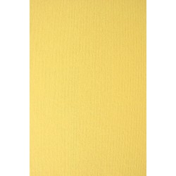 Papier Nettuno Pompelmo żółty A4 215g 5szt.