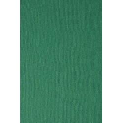 Papier Nettuno Verde Foresta zieleń A4 215g 5szt.