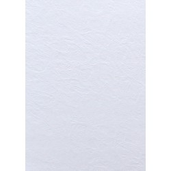 Papier wizytówkowy ozdobny skóra biała 246g 100szt