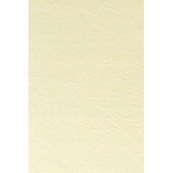 Papier wizytówkowy ozdobny skóra krem 246g 100szt