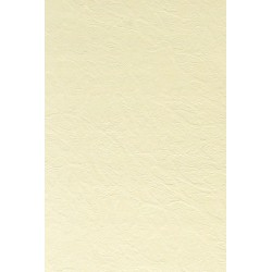 Papier wizytówkowy ozdobny skóra krem 246g A3