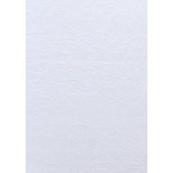 Papier wizytówkowy ozdobny skóra biała 246g A3