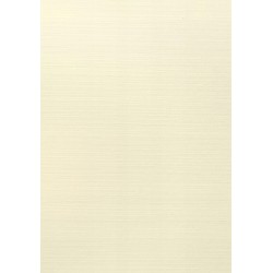 Papier wizytówkowy ozdobny kratka krem 246g 20A4