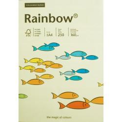 Papier gładki jasny żółty 160g A4 Rainbow kom 25sz