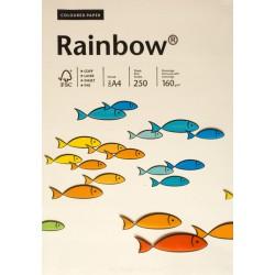 Papier gładki kremowy 160g A4 Rainbow kompl. 25szt